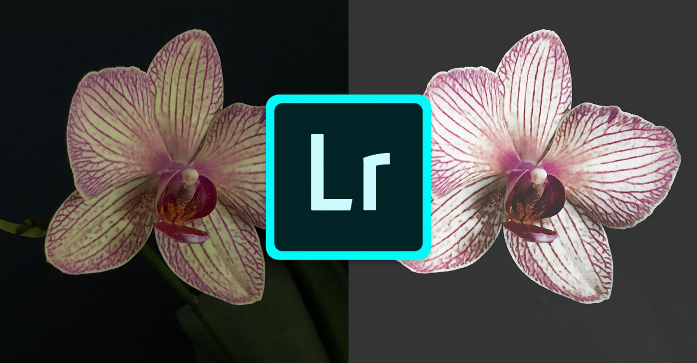 Wat is Lightroom Mobile?